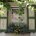 German window boxes by Laurel Eby