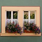 Sunny window boxes by Laurel Eby
