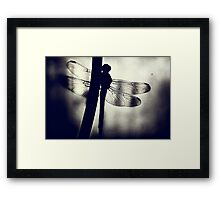 The Geisha Awaits... Framed Print