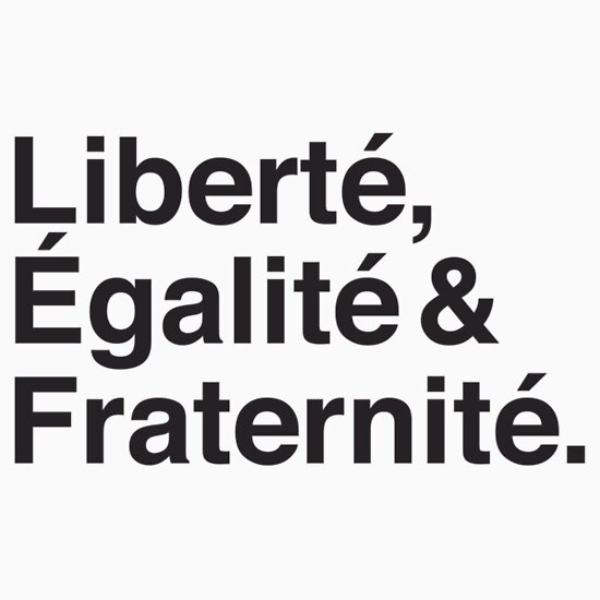 libert egalit fraternit the french revolution essay The phrase 'liberté, égalité, fraternité' became the slogan of the revolution other important figures in the enlightenment and the french revolution were voltaire and descartes these are just excerpts of essays please access the order form for custom essays, research papers, term papers, thesis, dissertations, book reports and case studies.