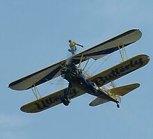 RIAT 2003 - Wing Walker by h3pat1c