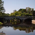 Pembroke Bridge with Reflections by goddarb