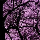 LONDON PARKS *UNNATURALLY* 8 Purple  by Tuartkatz