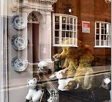 Reflecting On A Toy Shop Window by Jazzdenski