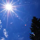 Summer Sun by FloraDiabla