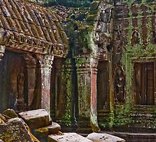 Angkor Thom Moss by phil decocco
