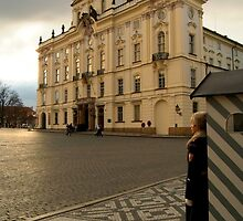 Guarding Prague Castle by SerenaB