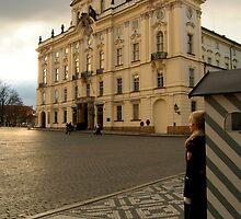 Guarding Prague Castle by SerenaB
