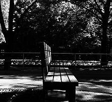 Bench. by tutulele