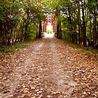 Fall Trail by Lina