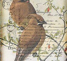 Postcard Waxwings by Debbie-Anne Parent
