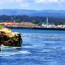 "Santa Cruz Cliffs and Boardwalk by Christine ""Xine"" Segalas"