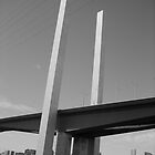 Bolte Bridge black and white image by Zeefive Photos