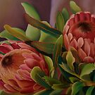 Proteas by Martha Mitchell