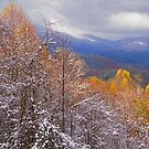 AUTMN SNOW,MORTON OVERLOOK by Chuck Wickham