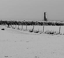Monolith at Delamont Park, Co Down by Philip Bateman
