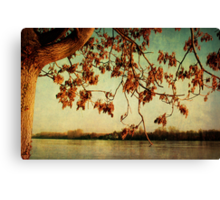 Rheinromantik Canvas Print