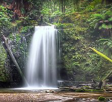 Waterfall Wonderland Panorama by Shannon Rogers