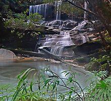 Swirlpool, Somersby Falls by bazcelt