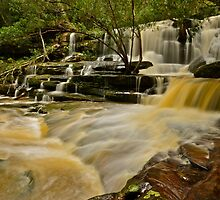 Bottom Falls.20-7-11. by Warren  Patten