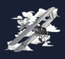 Vintage Biplane by Packrat