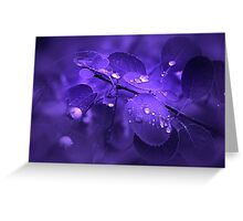 Sound of Silence Greeting Card