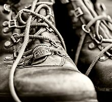 Tough Old Boots by Lynne Morris