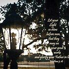 House Lantern- Matthew 5:16 by Janis Lee Colon
