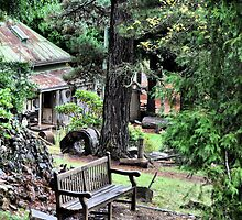 The Gatekeepers Cottage - Wynstay - Mt Wilson NSW Australia by Bev Woodman