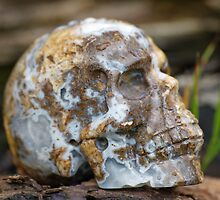 Agate Carved Crystal Skull  by LorrieBee