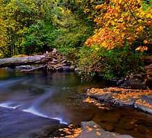 Lake Creek - Slide Rock - by Charles & Patricia   Harkins ~ Picture Oregon