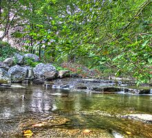 Mosquito Creek Looking North by Edith Reynolds