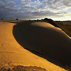 Dune Fringe by David  Hibberd