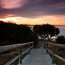 Boardwalk by scapephoto