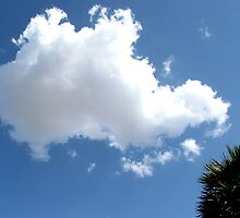 Puffy cloud and blue sky by Shiju Sugunan