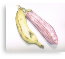 eggplant and banana, 1st illustration  Canvas Print