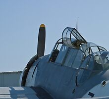 Side shot of NL9584Z TBM-3 Avenger by Henry Plumley