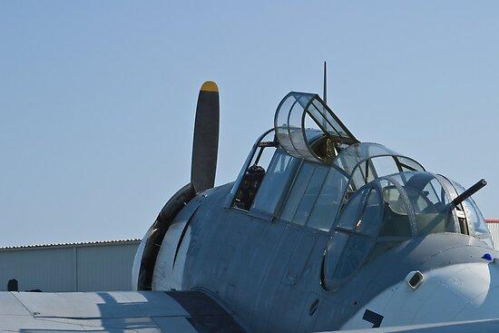 Side shot of NL9584Z TBM-3 Avenger by Henry Plumley