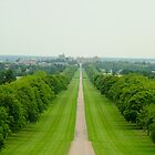 The Long Walk, Windsor Great Park by Riten Aghera