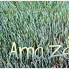 Amaze by WeblightStudio