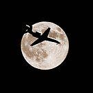 Moon Lit Landing by Gary Smith
