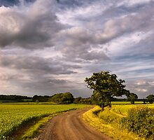 The Road Home by Geoff Carpenter