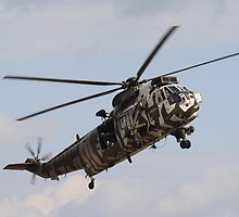 Jungly Sea King by Dave Godden