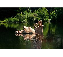 A Great Day for a Swim Photographic Print