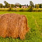 Hay-bale  by Mark David Barrington