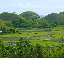 Chocolate Hills of Bohol by lensbaby