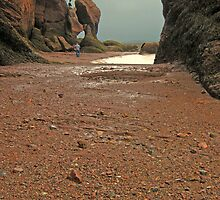 Strolling on the Ocean Floor at Hopewell Rocks by John  Kapusta