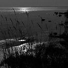 Door County Sunset by David Lampkins