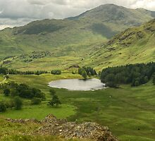 Blea Tarn from Lingmoor by VoluntaryRanger