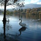 Grace on Coniston Water by JaxHunter